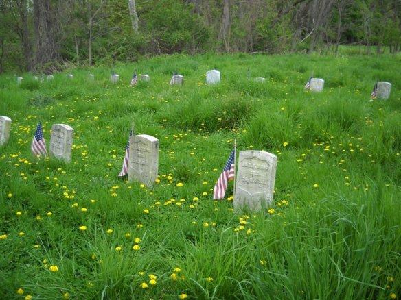The Willard Cemetery - Veterans