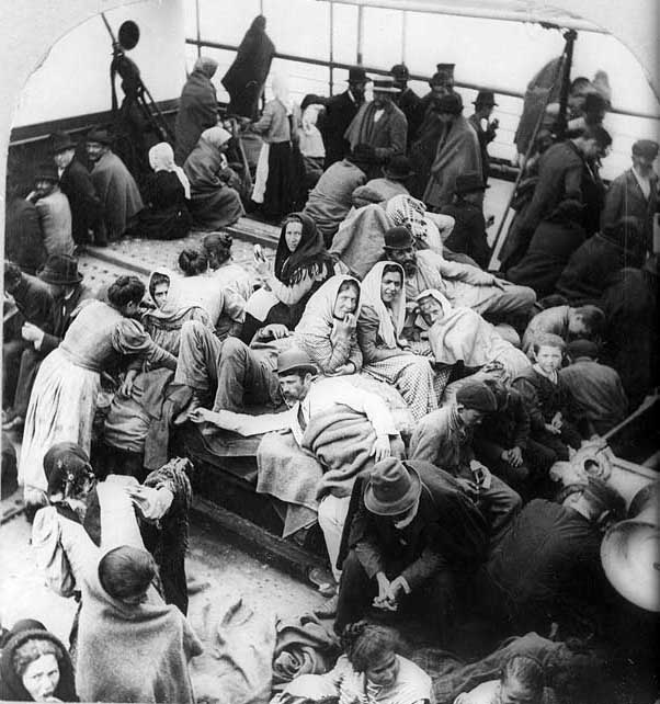 1907 The Deportation of Insane Aliens